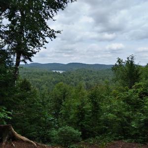 Victoria Scherff